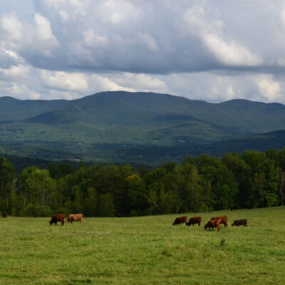 A Creative Soul in Stowe, Vermont